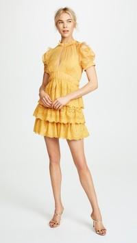 Self Portrait Mustard Embroidered Chiffon Dress