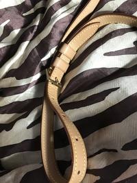 Louis Vuitton musette purse Angle7