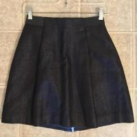 Exposed Zip Metallic Banded Panel Mini Skirt