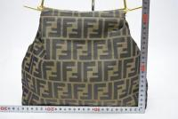 Authentic Fendi Hand Bag Zukka Nyron
