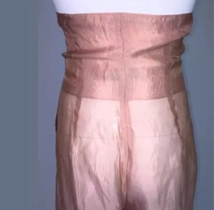 Dolce&gabbana sheer pants