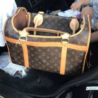 Louis Vuitton Pet Carrier Angle1
