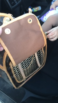Louis Vuitton Pet Carrier Angle3