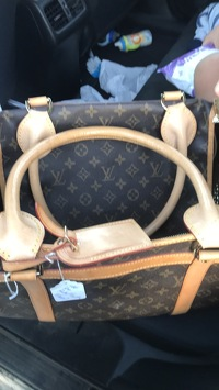 Louis Vuitton Pet Carrier Angle6