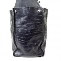 Chloe Alligator Bag Angle5