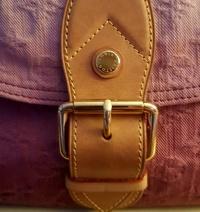LV Rouge Fauviste Ltd Ed Denim Sunray Bag Angle4