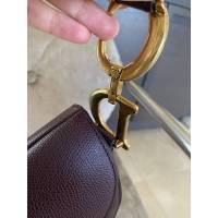 Dior Saddle bag Angle7