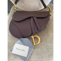 Dior Saddle bag Angle8